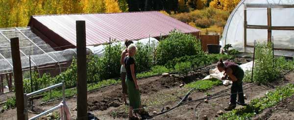 girls-garden-aspens
